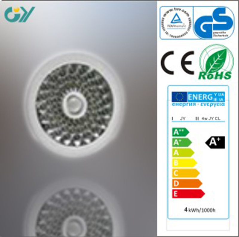 Hot Sale 7000k 5W LED Ceiling Light with CE