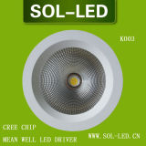 CREE COB 30W LED Down Light with Mean Well Driver