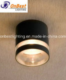 Waterproof Aluminum 4W LED Outdoor Ceiling Light in IP55