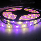 Four Color SMD5050 LED Strip Light