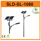 Solar LED Street Light (FDS-10810)