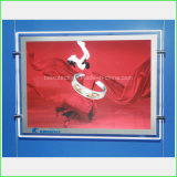 Double Side LED Acrylic Light Box for Advertisement (CDH03-A3L)