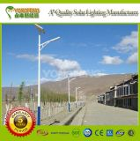 High-Quality Solar Street LED Light