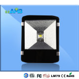 IP65 Tunnel Wall Lighting LED Lamp 80W Outdoor Light
