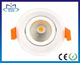 High Power 30W Dimmable COB LED Ceiling Light