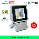 60W High Performance Outdoor RGB LED Flood Light