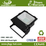 IP65 Waterproof 100W LED Outdoor Light with Aluminum Housing