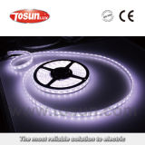 Low Voltage LED Strip Light Rope Light