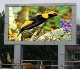 Outdoor P10 Full Color Advertising Video LED Display