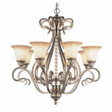 Steel Antique Chandelier with Glass Shade (CH-850-5011X8)