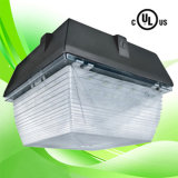 LED Canopy Light Ceiling Fixtures With Mean Well UL Driver