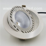 Hot Sell New Model LED Down Light for Chain Shop