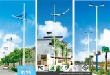 Traditional Outdoor LED Street Light (BDD102-104)
