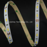 CE Approved LED Strip Light with High Luminous
