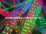 LED Strip Light 5 Wires LED Rope Light (Flat Shape)
