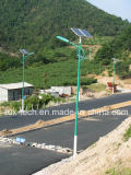 40W Solar LED Street Light with Green Color