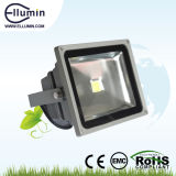 Outdoor LED Flood Light Low Price 30W