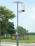 Solar Garden Light (Garden, Yard, Square, Park, Square Lighting)
