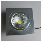 10W CE Specular Silver Warm White COB LED Ceiling Light