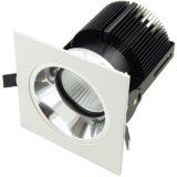 Spray White+ Specular Silver Inner Ring 25W COB LED Wall Washer