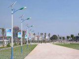 Global Wholesales Solar LED Road Light