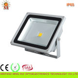 20W New Style Hot Sale LED Outdoor Light (IP65)