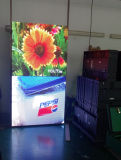 Full Color P6 Indoor LED Display with Video Function