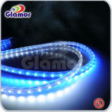 UL LED Strip Light with 3528 / 5050 for Choice