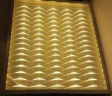 36W 3D LED Panel Light