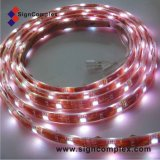 IP20 SMD 5050 LED Strip Light