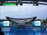 P12 Full Color Outdoor Stage LED Display (LS-O-P12)