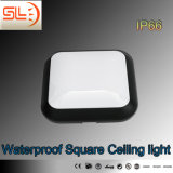 LED Waterproof Ceiling Light in Suqare