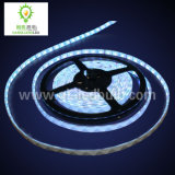 LED Car Light (5m-5050SMD-300SMD)