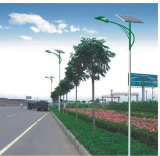 Solar LED Street Light (LB-SL36)