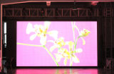 P7.62 Indoor Full Color Rental LED Display (201104)