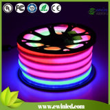 Dimmable RGB LED Neon Flex Light LED Strip 220V