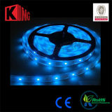 Shenzhen Manufacturer LED Holiday Light RGB LED Strip Light