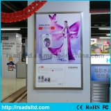 New Design Super Slim Aluminum LED Light Box