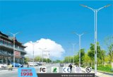All in One LED Outdoor Street Light (DL0020)