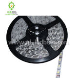 LED Hotel Light (300SMD-5m-5050)