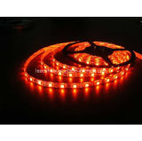 5050 60LEDs/M Multicolor LED Light Strip