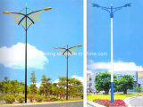 New Model LED Street Light