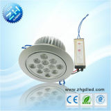 LED High Power Spot Down Light (ZGD-THS140W-12W)