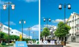 Chinese Style Outdoor LED Street Light (BDD105-106)