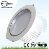 Brightest LED Lamp, 30W LED Down Light