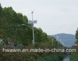 Outdoor LED Solar Street Light with CE, CCC, Approval