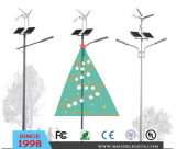 American Market Wind Solar Hybrid LED Street Light (BDTYN2-4)