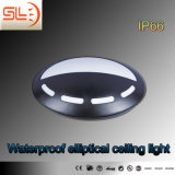 White and Black IP65 LED Ceiling Light with CE
