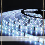 12V 24V 5050 Waterproof Strip Light Flexible LED Light