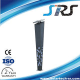 Landscape LED Solar Lighting Solar LED Landscape Light From SRS with CE Approved